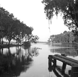 Salt Springs Old Florida
